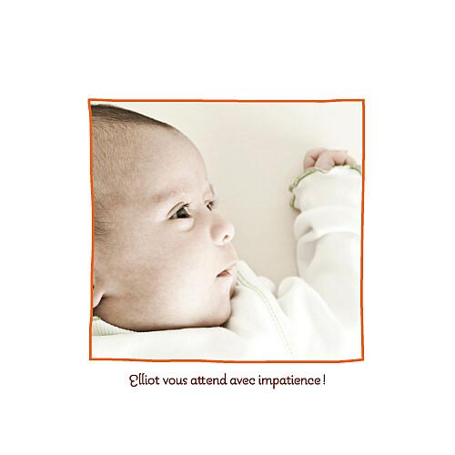 Faire-part de naissance 5 dromadaires orange