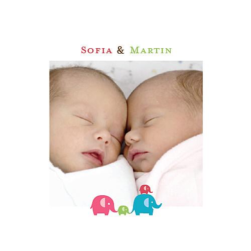 Faire-part de naissance Jumeaux mixte recto verso rose et vert