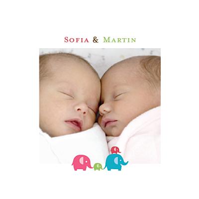 Faire-part de naissance Jumeaux mixte recto verso rose et vert finition