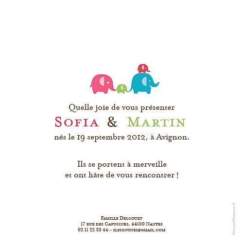 Faire-part de naissance Jumeaux mixte recto verso rose et vert - Page 2