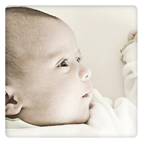 Faire-part de naissance Bilingue chevalet blanc