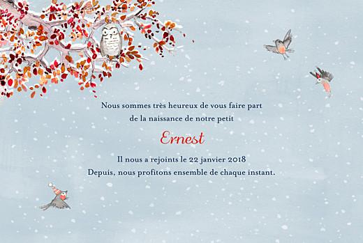 Faire-part de naissance Conte d'hiver photo bleu - Page 3