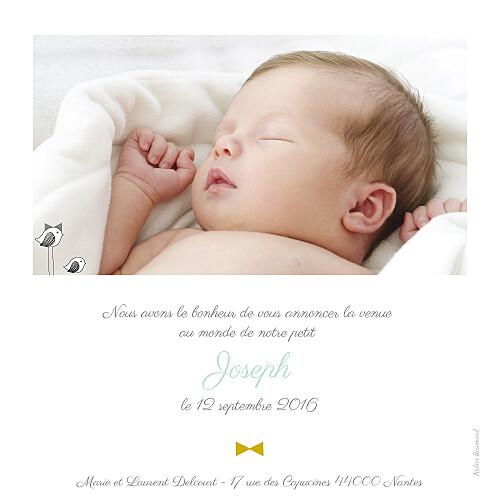 Faire-part de naissance Là-haut photo rv vert eau - Page 2
