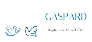 Etiquette de baptême animaux colombes bleu
