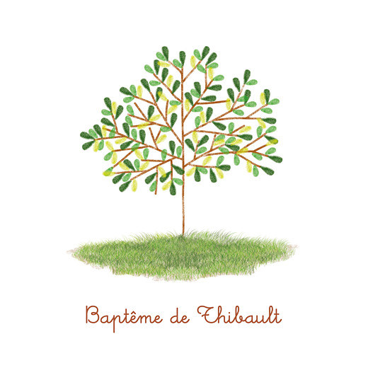 Carte de remerciement Petit arbre vert