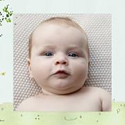 Faire-part de naissance Nous irons au bois (triptyque) bleu ciel page 2