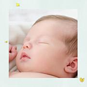 Faire-part de naissance Nous irons au bois (triptyque) bleu ciel page 4