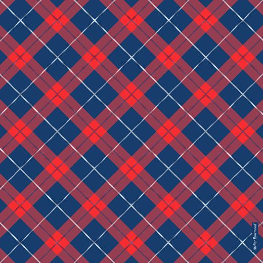Faire-part de naissance Écossais bleu & rouge - Page 2