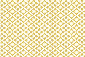 Carte de correspondance classique on dirait le sud jaune...