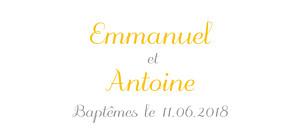 Etiquette de baptême jaune balade jumeaux jaune
