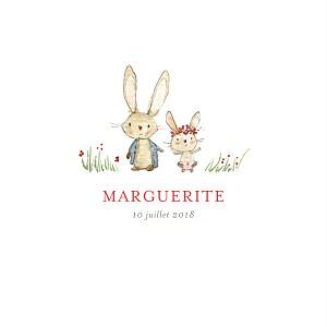 Faire-part de naissance rouge petits lapins (2 enfants) fille