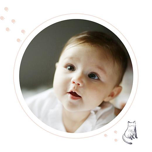Faire-part de naissance Chat & compagnie (triptyque) poudre - Page 5