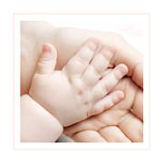 Faire-part de naissance Chat & compagnie (triptyque) poudre page 6