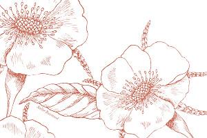Carton réponse mariage Gravure chic corail