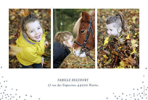 Carte de voeux Flocons de noël 3 photos bleu