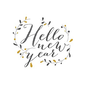 Carte de voeux marron hello new year 3 photos brun