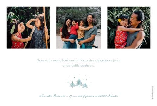 Carte de voeux Boule à neige 3 photos bleu - Page 2