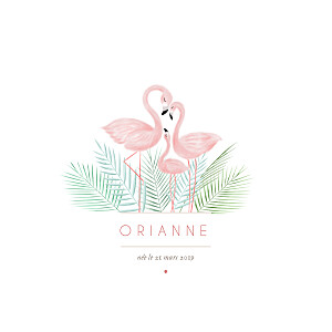Faire-part de naissance sans photo flamant rose blanc