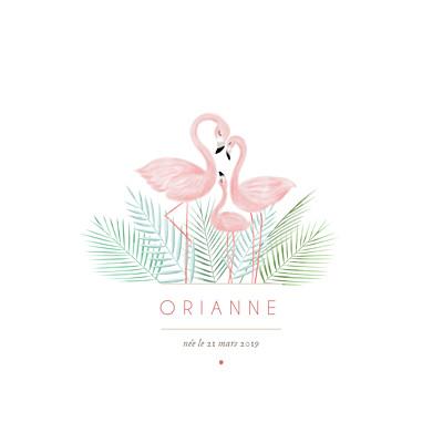 Faire-part de naissance Flamant rose blanc finition