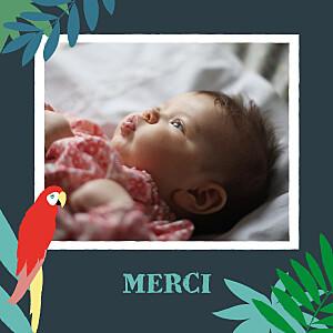 Carte de remerciement vert petits perroquets des îles bleu nuit