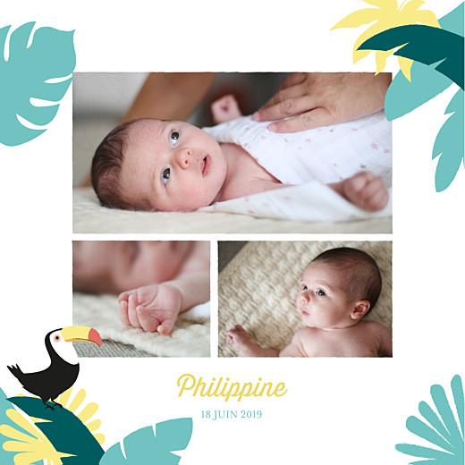 Faire-part de naissance Toucans d'amazonie photo bleu