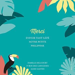 Carte de remerciement printemps-eté petits toucans d'amazonie photo bleu
