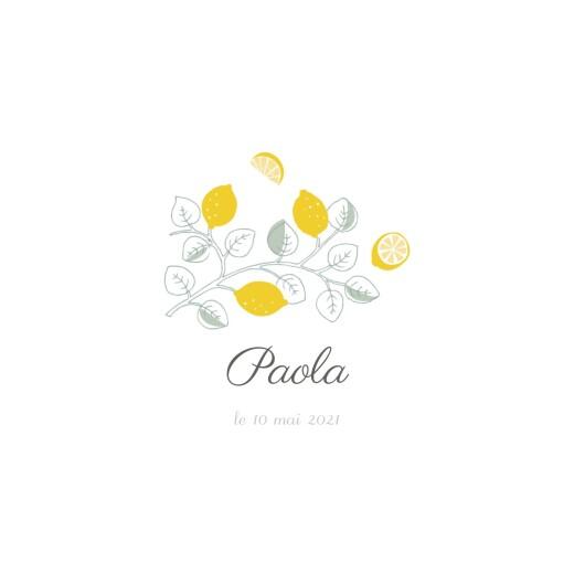 Faire-part de naissance Citrons photos 4p jaune