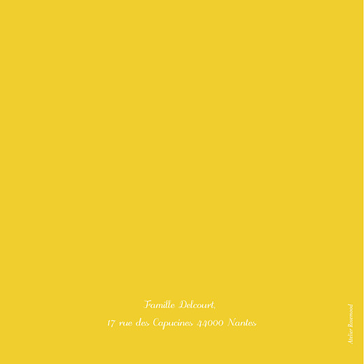 Faire-part de naissance Citrons photos 4p jaune - Page 4