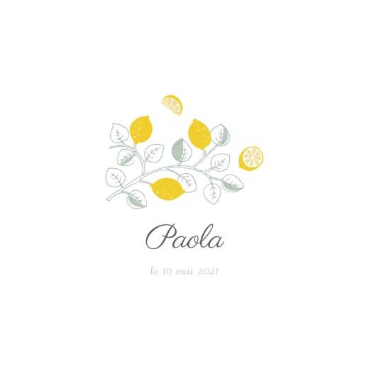 Faire-part de naissance Citrons photo jaune - Page 2