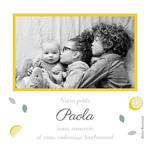 Carte de remerciement nature petits citrons photo jaune