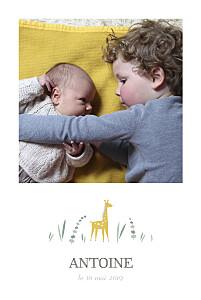Faire-part de naissance classique girafe 4 photos rv blanc