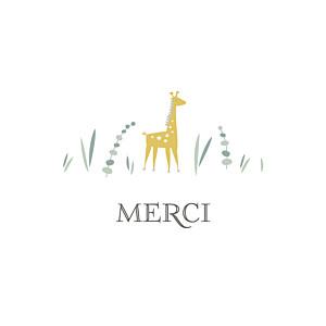 Carte de remerciement nature petite girafe photo blanc