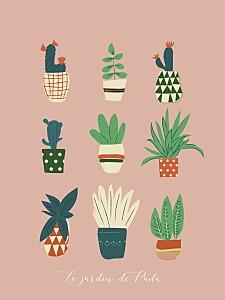 Affiche rose cacti cactus rose
