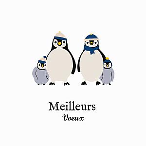 Carte de voeux sans photo petits pingouins blanc