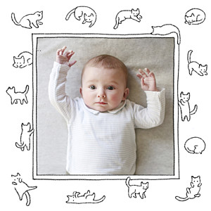 Carte de remerciement petit frère ou petite soeur petit chaton blanc