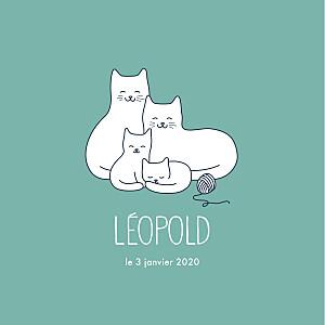 Faire-part de naissance Quatre petits chats menthe