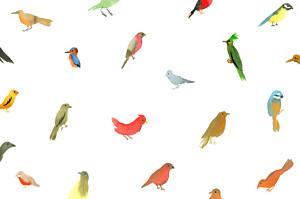 Carte de correspondance moderne jolis oiseaux blanc