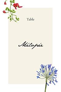 Marque-table mariage mélopée blanc