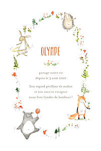 Faire-part de naissance original la ronde des animaux blanc