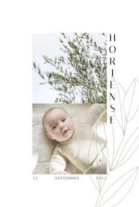 Faire-part de naissance Saison vert