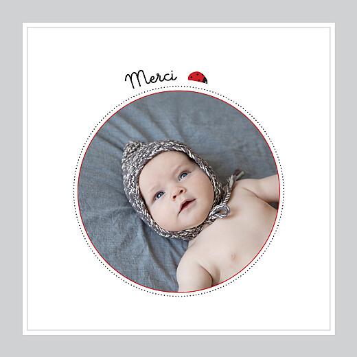Carte de remerciement Petite coccinelle photo gris