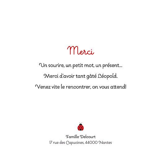 Carte de remerciement Petite coccinelle photo gris - Page 2