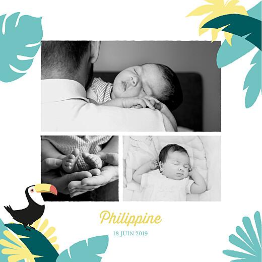 Faire-part de naissance Toucans d'amazonie photo bleu - Page 2