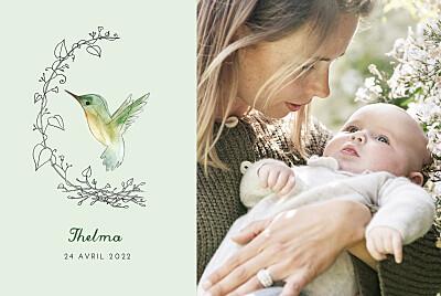 Faire-part de naissance Petit colibri (paysage) vert finition